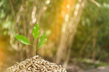Agrirai Biomasse